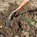 Bien choisir ses outils pour jardiner conseil bricolage for Conseil pour jardiner